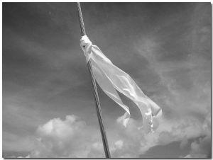 white flag 2